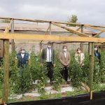 Intendente Guzmán y Ministro de Ciencia conocen experiencia de uso de tecnologías en la producción de hortalizas orgánicas.